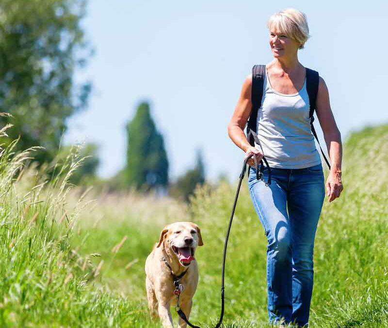 Wandern mit dem DREISER Sprudel – Erlebnisweg Ritter-Räuber-Römer