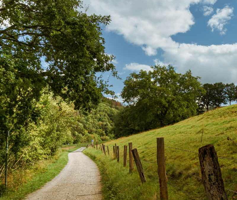 Wandern mit dem DREISER Sprudel – Erlebnisweg Kurschattensteig